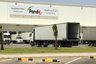Panda uses Cirrus Logistics CLASS Warehouse Simulation